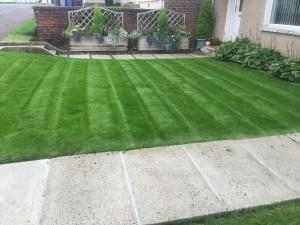lawn The Lawn Advocates 3