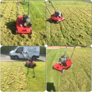 lawn scarification x 4