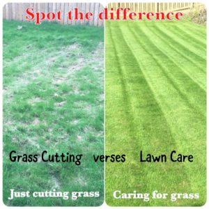 Grass Cutting vs Lawn Care