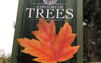 A History of Trees – book review
