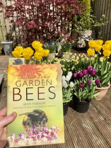 The Secret Lives of Garden Bees - front cover