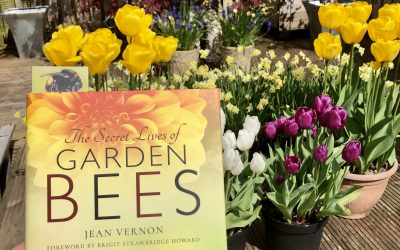 The Secret Lives of Garden Bees – book review