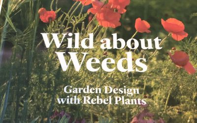 Wild About Weeds – book review