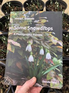 Some Snowdrops - front cover