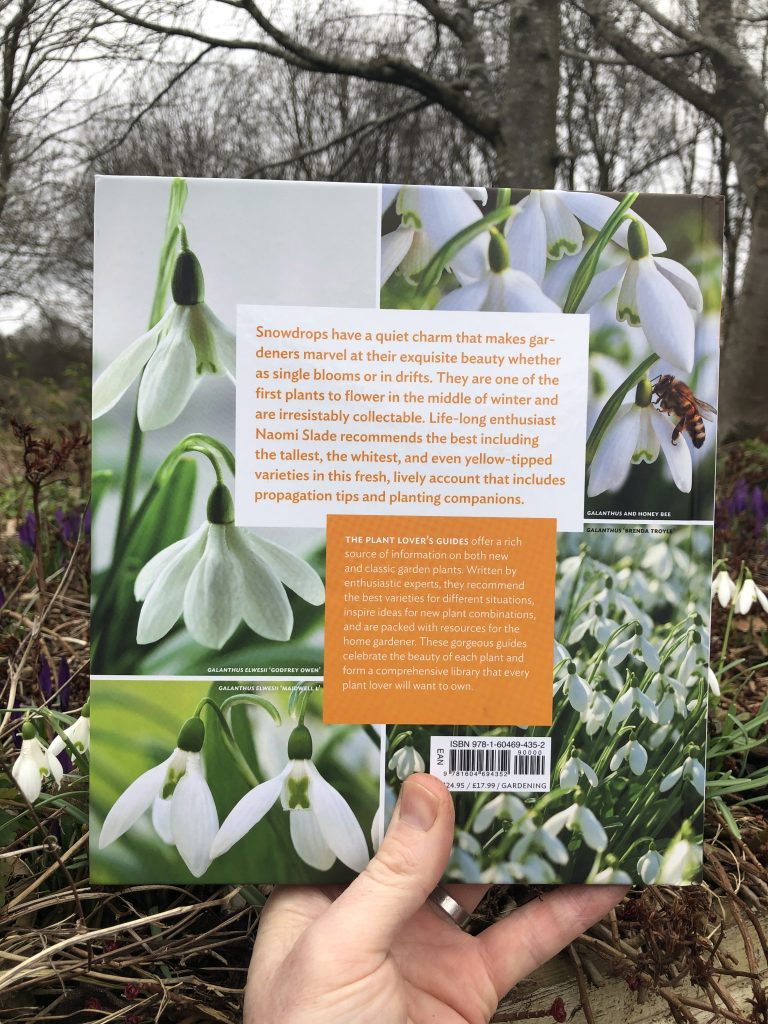 A Plant Lover's Guide to Snowdrops - rear cover